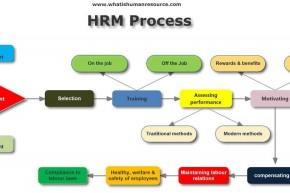 HRM_Process_1.jpg